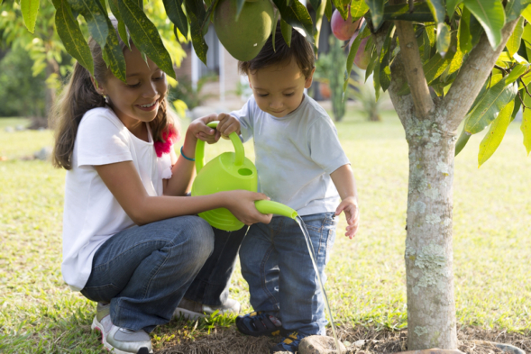 How Gardening Can Help with Children's Learning